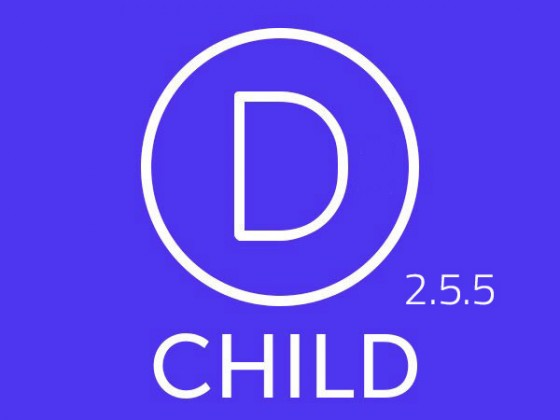 Divi Child French 2.5.5