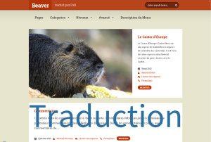 Le Castor en français