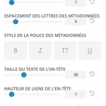 Divi-French-Customizer-Details
